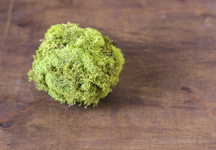 Natural moss decor with styrofoam and reindeer moss