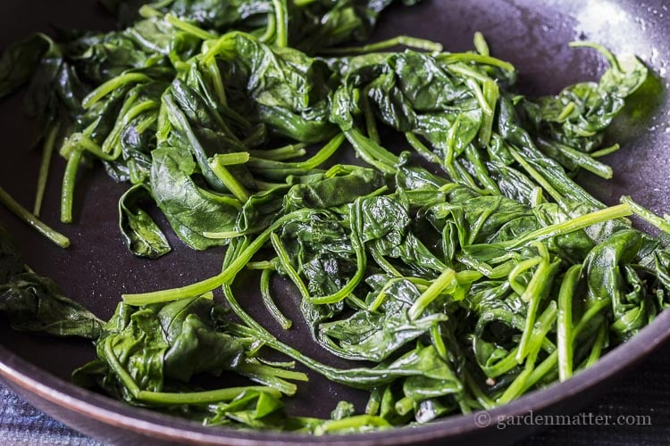 Sauted fresh spinach leaves until just wilted.