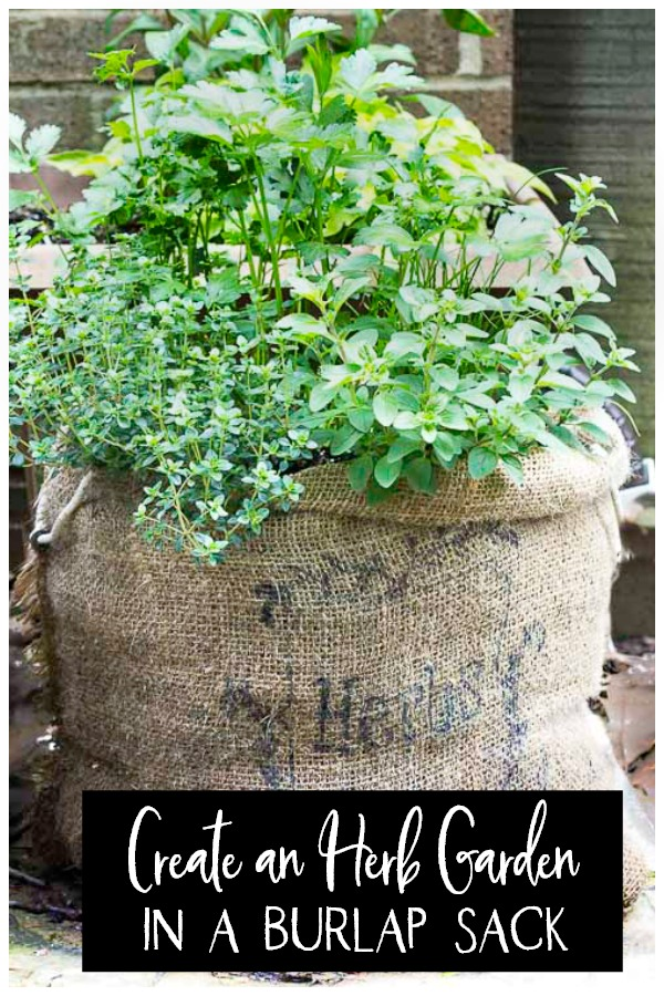 burlap herb garden