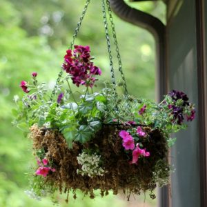Tips for creating beautiful hanging flower containers