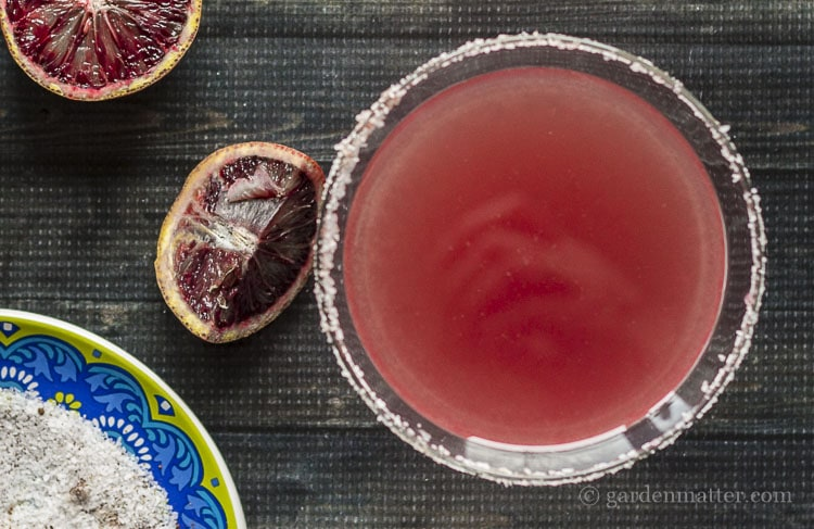 Cocktail recipe for a margarita made with blood oranges and cayenne pepper salt.