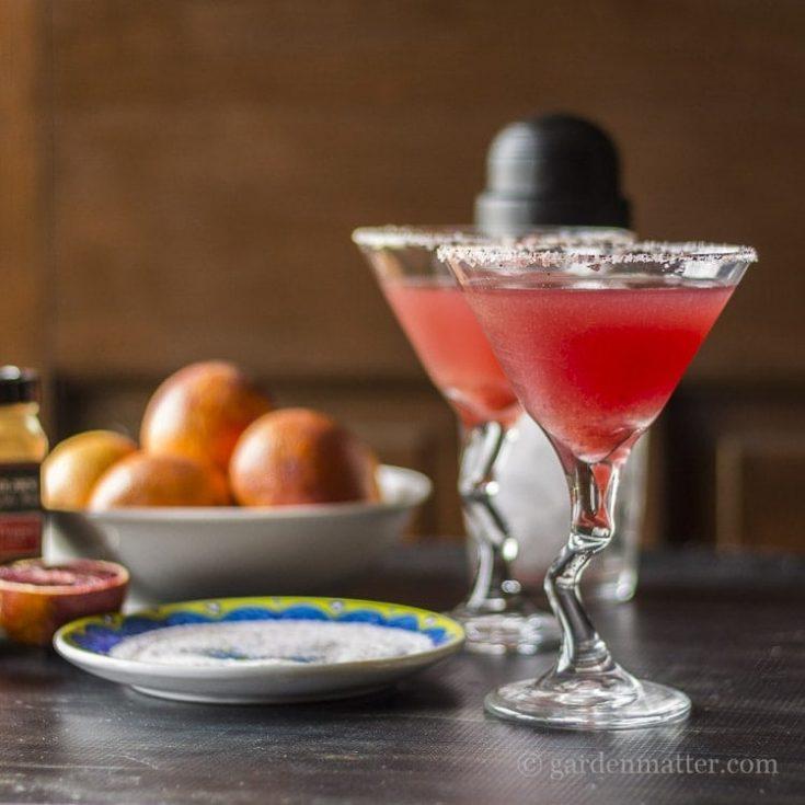 Sweet and Spicy Blood Orange Margarita Cocktail with Cayenne Salt
