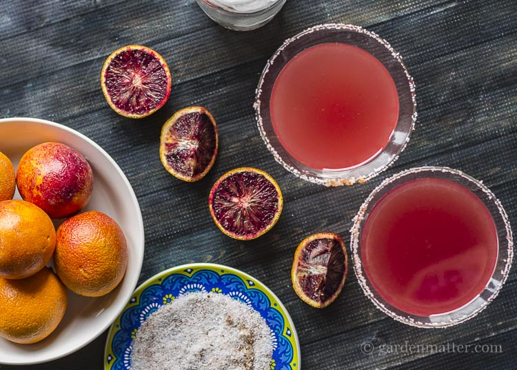Sweet and spicy blood orange margaritas.