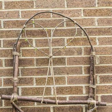 DIY garden trellis from branches in your backyard.