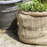 Herb garden in burlap sack on patio.