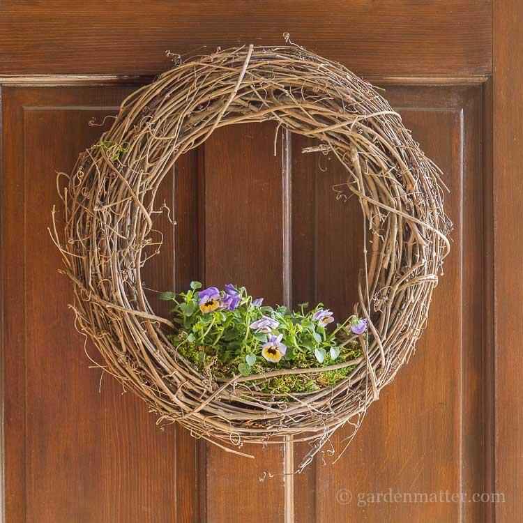 Living floral grapevine wreath on front door.