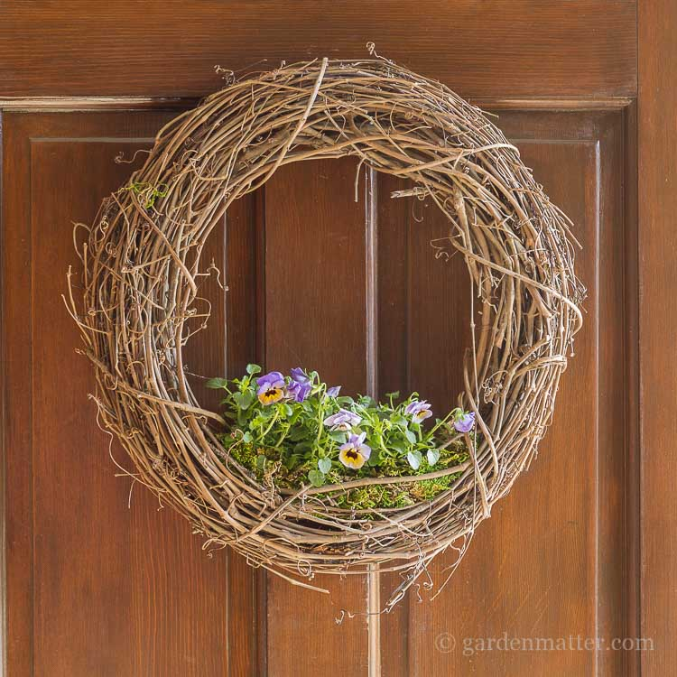 Living floral grapevine wreath on front door.