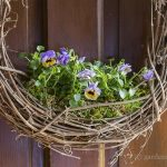 How to Create a Beautiful Living Floral Grapevine Wreath