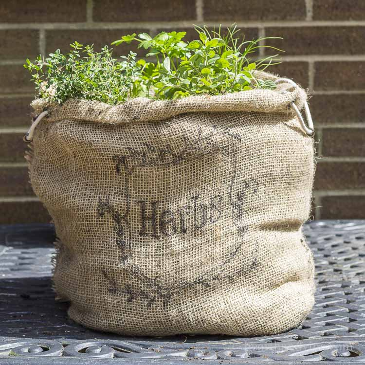 How to make an herb garden in a burlap sack.