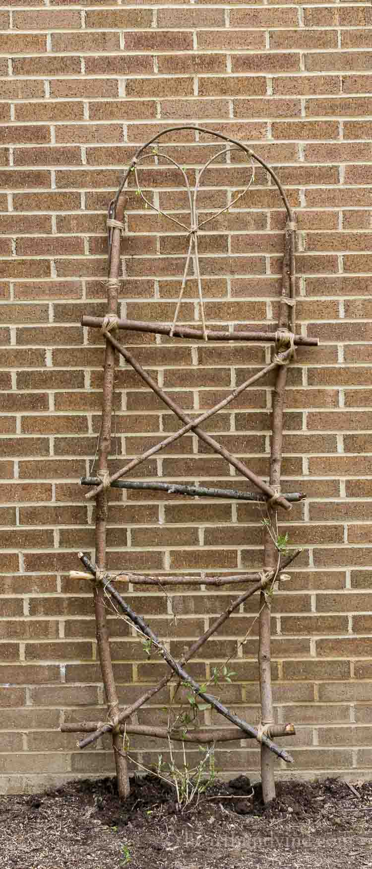 Make your own garden trellis from extra branches and twigs.
