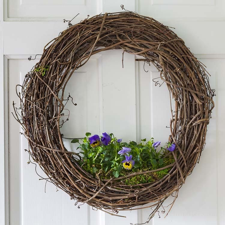 Tutorial to create a living floral grapevine wreath.