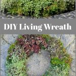 Front and side view of living wreath