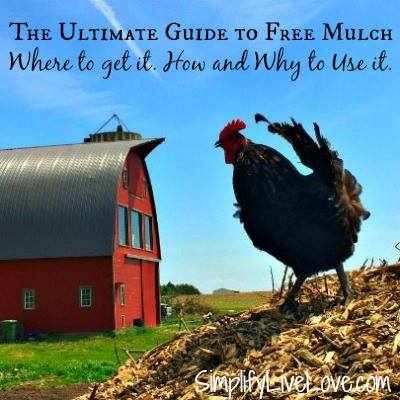 Free mulch guide