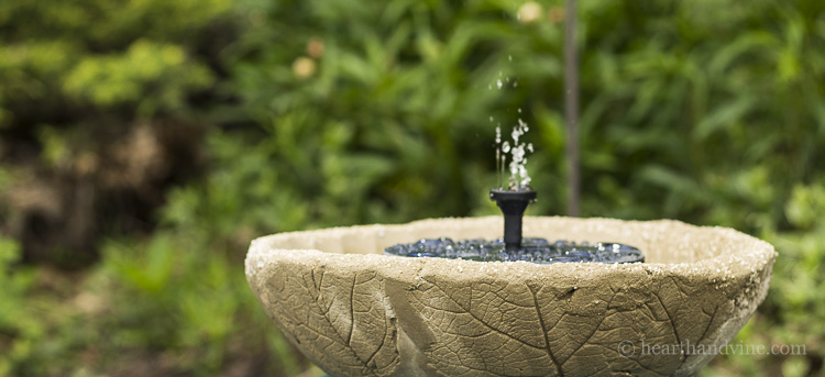 Embossed leaf concrete fountain and bird bath