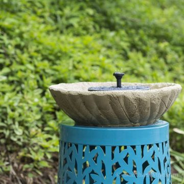 Leaf embossed fountain and bird bath.