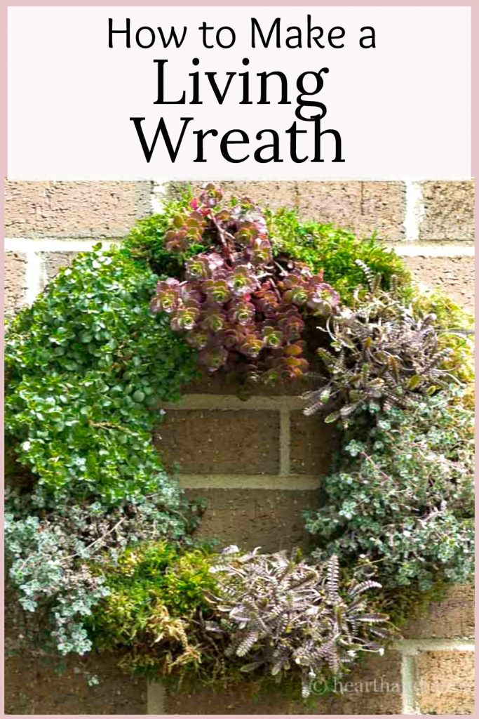 Living wreath on brick wall