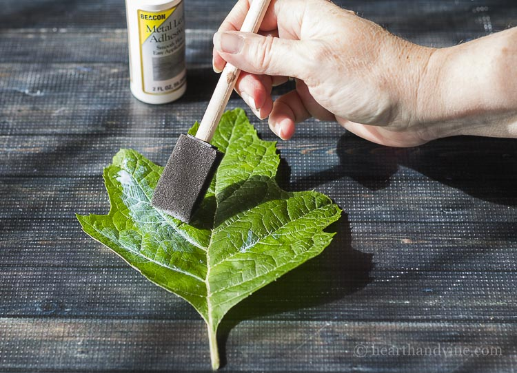Brush one adhesive to front of leaves.