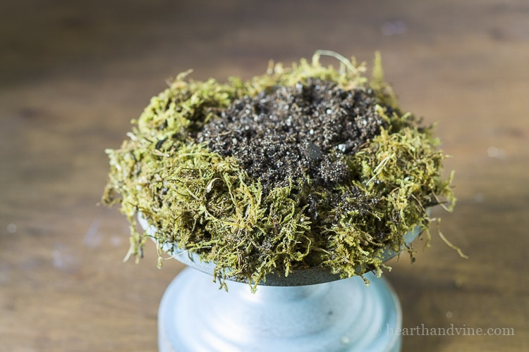 Place sphagnum moss on base and side and add soil.