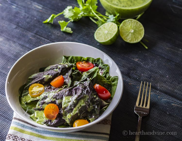 Salad with cilantro lime vinaigrette