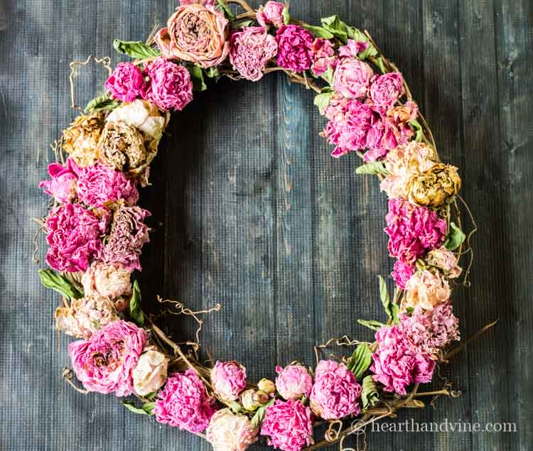 Dried peony wreath from garden flowers.