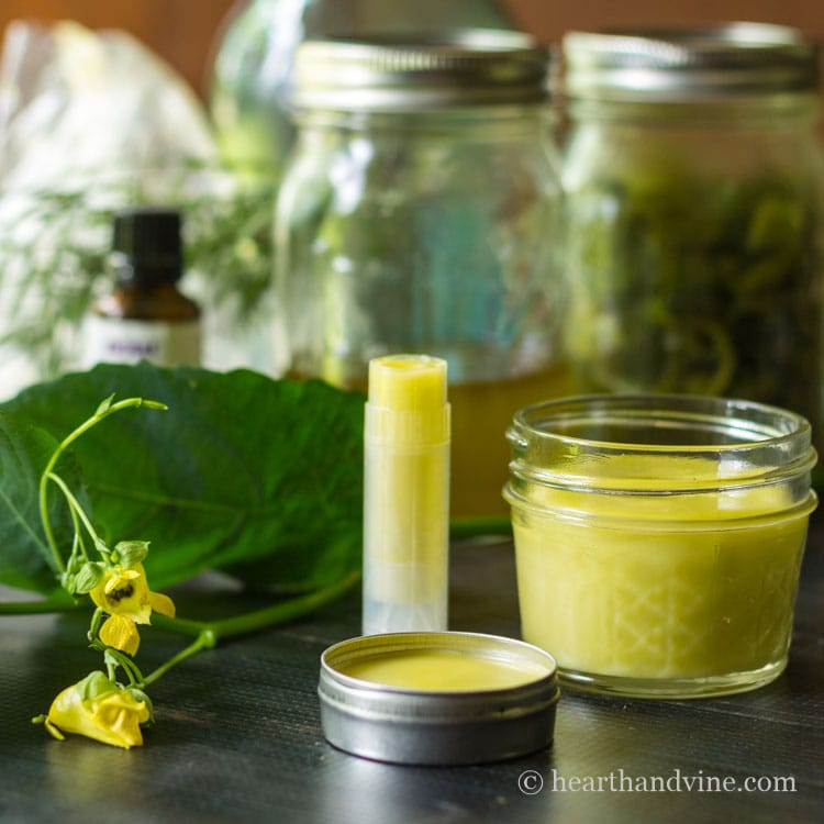 Jewelweed salve is easy to make and may aid irritated skin from poison ivy and bug bites. Learn more about identifying and preserving this helpful plant.