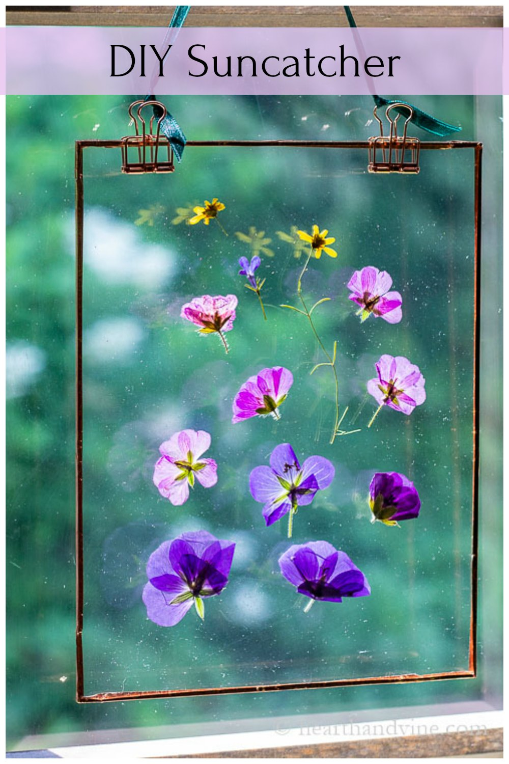 Pressed flower suncatcher in window