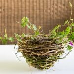 Make a grapevine basket planter.