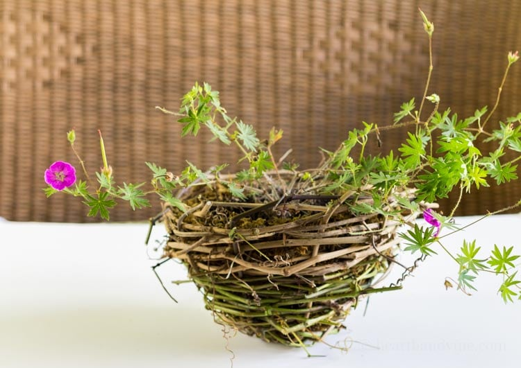 How to Make a Rustic Grapevine Basket Planter