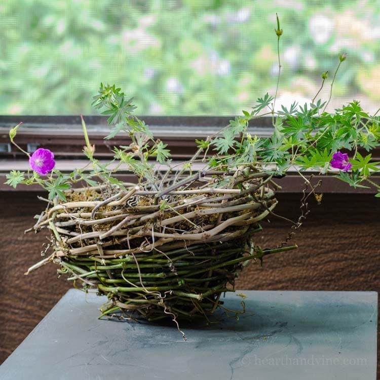 Handmade rustic grapevine basket planter.
