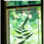 Fern suncatcher in window