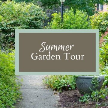 Summer garden tour for Tuesdays in the Garden.