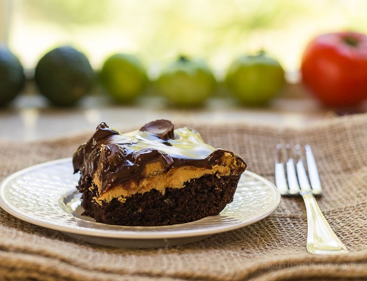 Chocolate peanut butter cake.