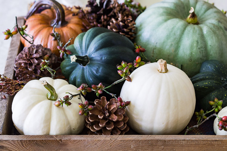 Fall Home Tour - Centerpiece