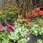 Fall Planter Ideas That Will Take You Well In to Winter