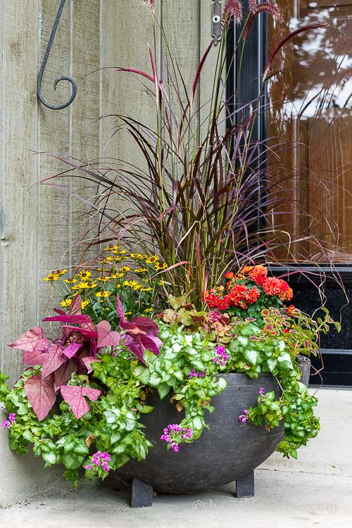 these fall planter ideas will help you choose and create beautiful container gardens that will last - Planter Ideas