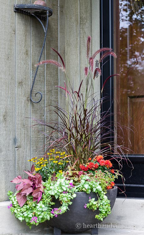 These fall planter ideas will help you choose and create beautiful container gardens that will last well into the winter season.