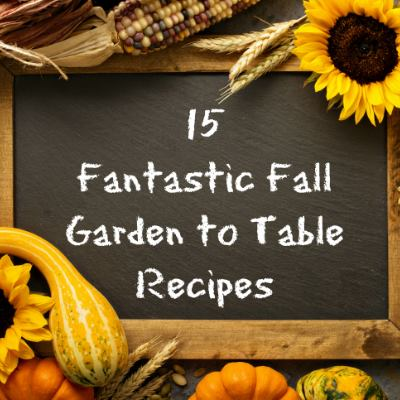 15 Farm to table recipes