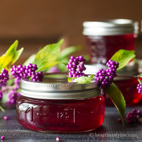 Beauty berry jelly made from this wonderful American native shrub.