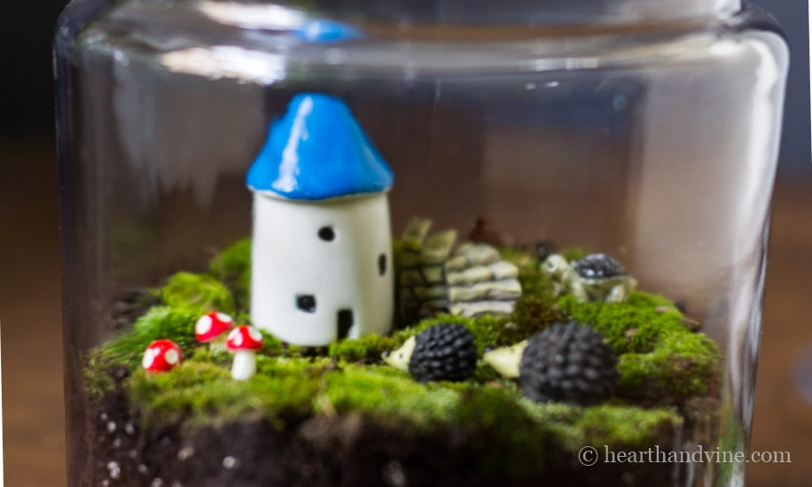 This fairy garden terrarium is made with living moss from your backyard.