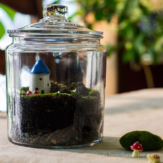 Fairy Garden Terrarium: Using Living Moss to Make a Sweet Gift