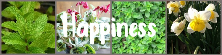 Collage of happiness plants