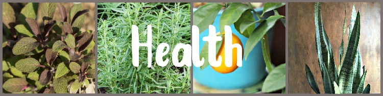 images of healthy plants