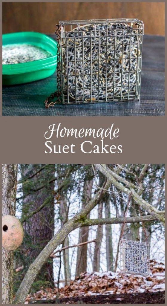 Homemade suet cakes for winter birds