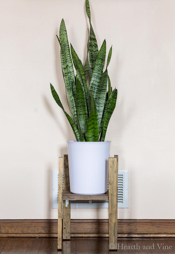 Modern plant stand with pot and plant.