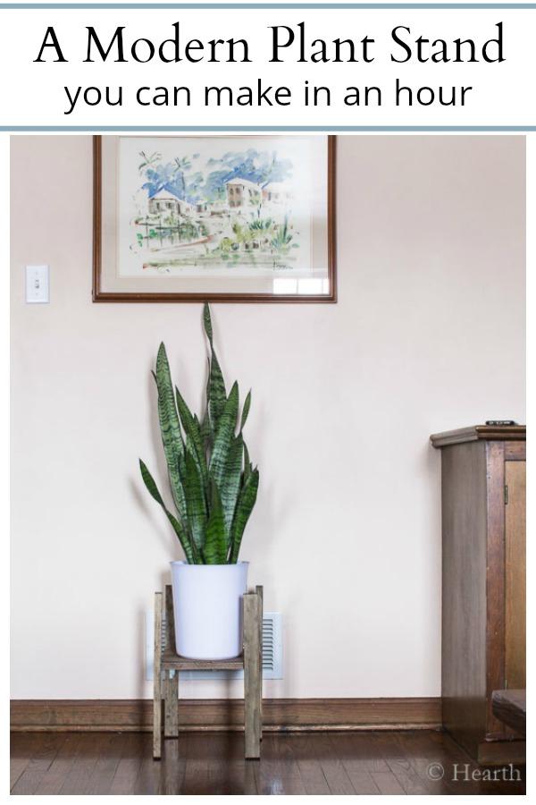 DIY easy modern plant stand tutorial