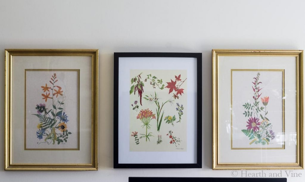 Gold framed pressed flower prints on wall.
