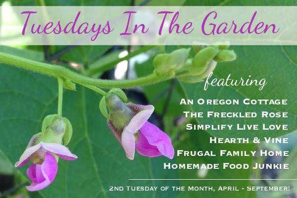 Tuesdays in the garden graphic