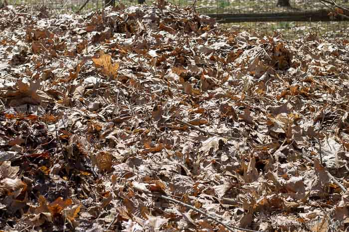 Easy compost pile