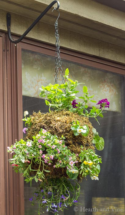 Hanging globe planter with wire baskets and sphagnum moss