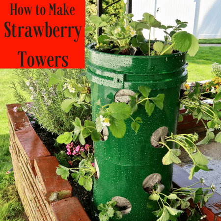 DIY strawberry towers
